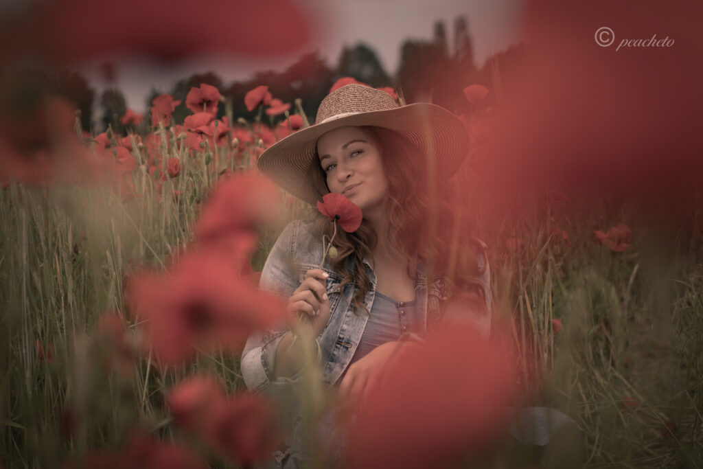 anika mohnblumenfeld radebeul coswig peacheto fotografie